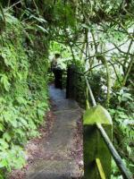 Stairway at Waterfalls