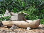 Bredda Lion's hand carved canoe