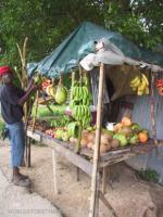 Fruit Stand in Long Road Community