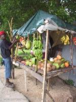 Fruit Stand near Zion Country, Jamaica
